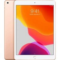 10.2-inch iPad Wi-Fi + Cellular 128GB: Space Grey, Silver, Gold > Authorised Arabic Version